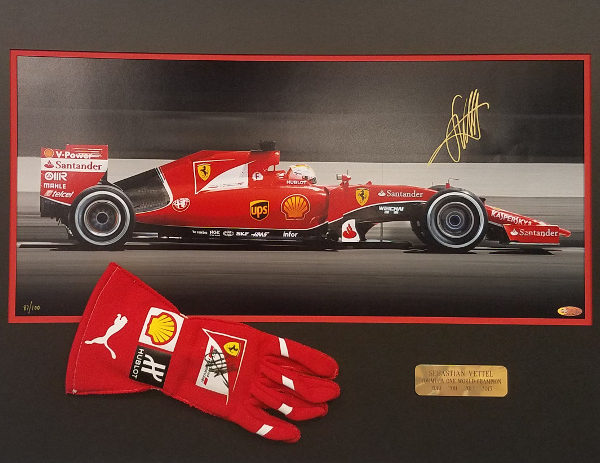 Vettel Collage with Glove
